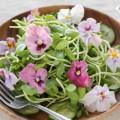 Essbare Blüten: deshalb gehören sie zu den Food Trends 2018